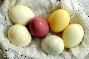 Pastel Tea Eggs, colored with teas!