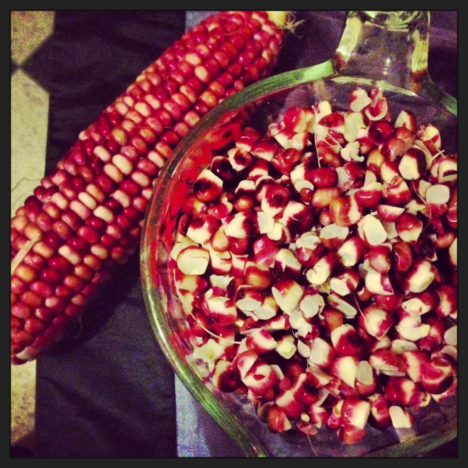 My instagram'd red corn.