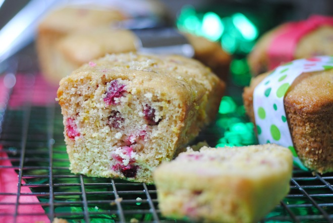 Gluten-Free Cranberry Bread - The Dusty Baker-2