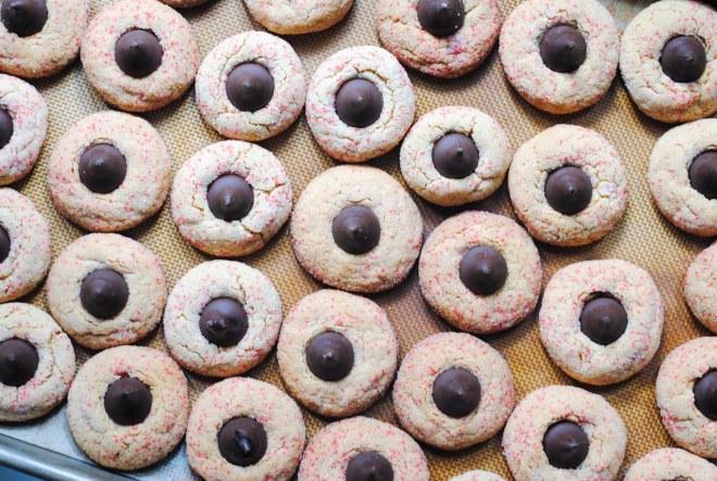 Gluten-Free Peanut Butter Krinkles - The Dusty Baker-1
